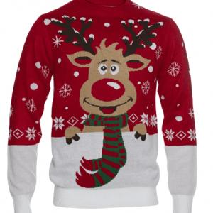 Flot rodolf julesweater